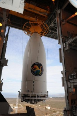 octopus logo on rocket