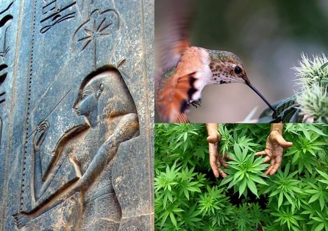 Seshat goddess cannabis knowledge FB